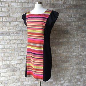 Banana Republic Striped Lined Dress Size 8 🌸